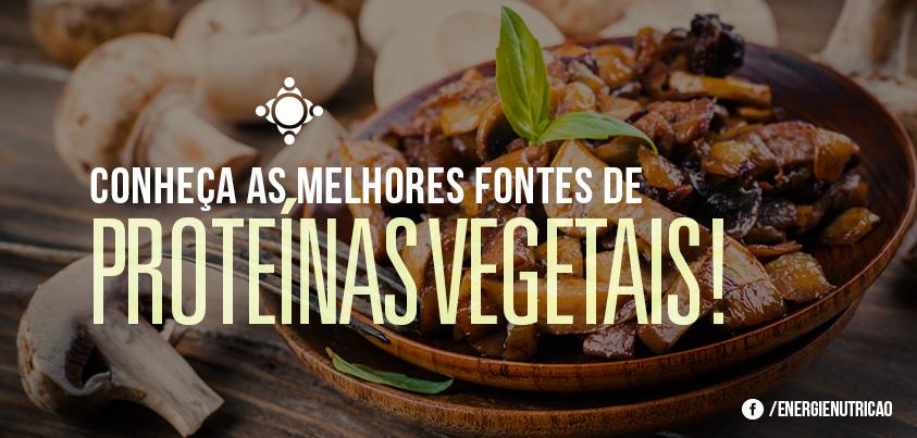 fontes de proteínas vegetais