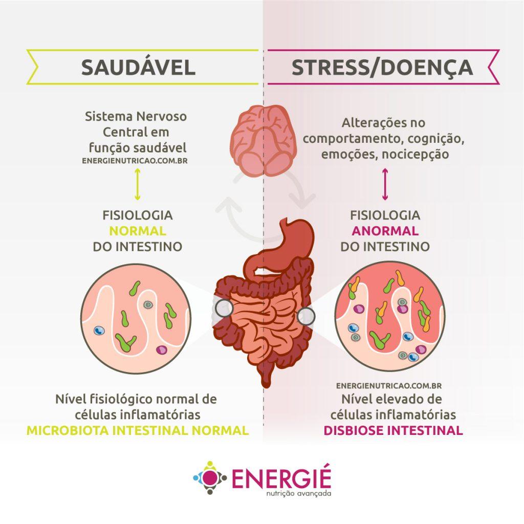 intestino segundo cérebro - infográfico de interação entre o cérebro e o intestino conforme a saúde do indivíduo