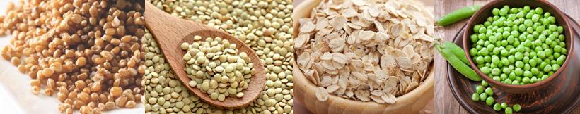 alimentação vegana na gravidez - fontes de Proteína