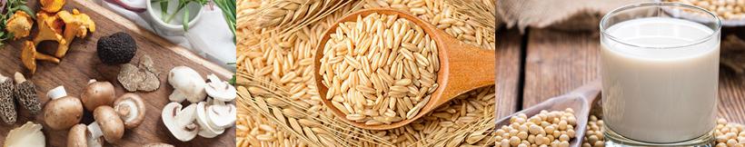 alimentação vegana na gravidez - fontes de Vitamina D