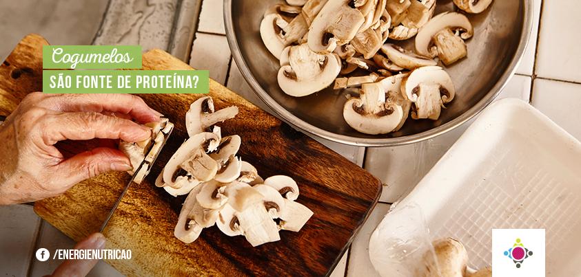 cogumelo não é fonte de proteína