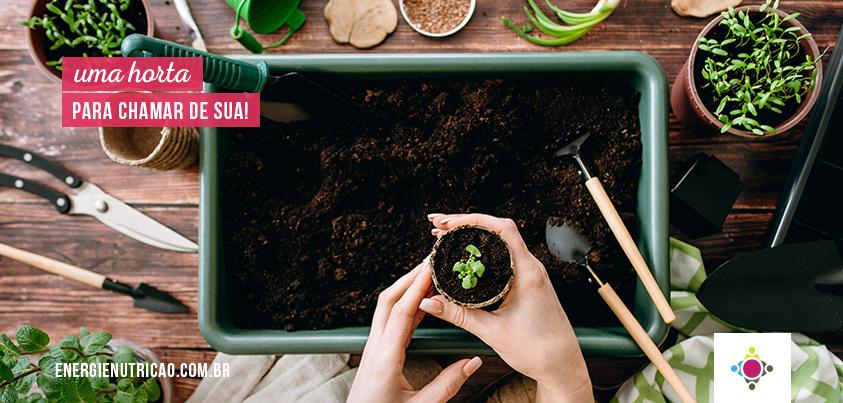 Passo-a-passo para você montar e manter uma horta em casa com sucesso